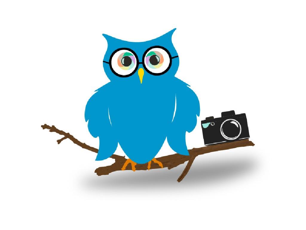 Owl School-01