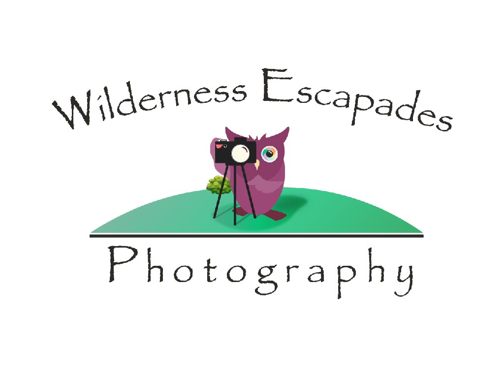 Wilderness escapades photography logo